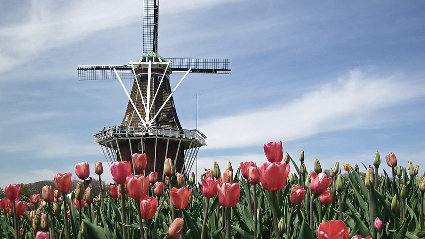 разрешение на строительство дома в Голандии